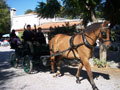 North Cyprus, Horse Riding